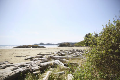 BEAUTI photography travel photographer Wall Art Long Beach Tofino British Columbia