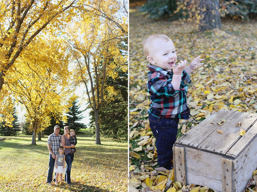 family lifestyle portrait photographer Weyburn outdoor family photography baby boy standing beautiful fall coloured leaves photo