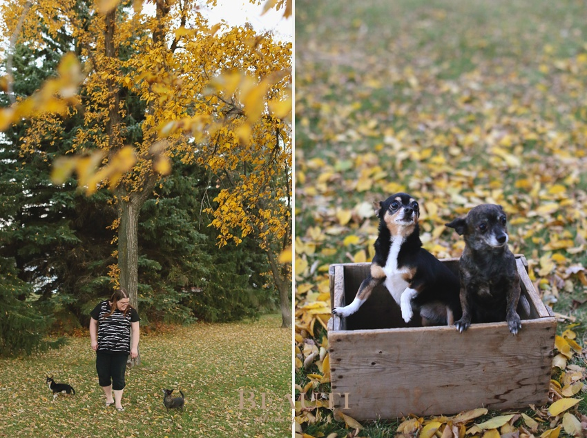 Weyburn portrait photography outdoor lifestyle photographer pet photography walking in fall leaves dogs photo