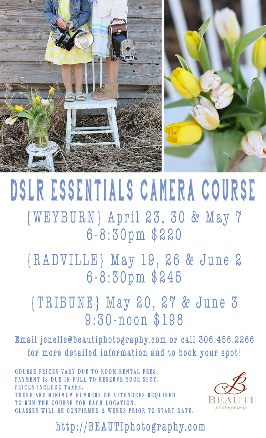 Camera Dslr Camera Course dslr essentials camera course beauti photography tribune weyburn radville saskatchewan courses spring 2015 shoot on manual learn your dslr