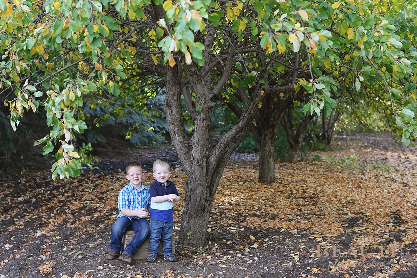 Tribune Saskatchewan outdoor lifestyle portrait photography Saskatchewan children photography outdoor lifestyle photographer brothers sibling portraits wooden crate apple tree photo