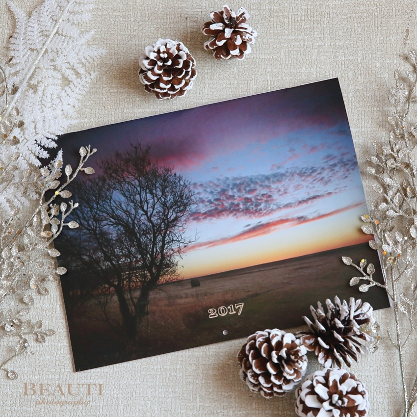 BEAUTI photography Tribune Saskatchewan outdoor lifestyle nature photographer These Prairie Skies 2017 calendar giveaway prairie skies winter solstice giveaway photo