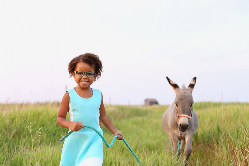 Tribune Saskatchewan outdoor lifestyle portrait photography Saskatchewan children photography outdoor lifestyle photographer 5 year old portraits miniature donkey leading photo