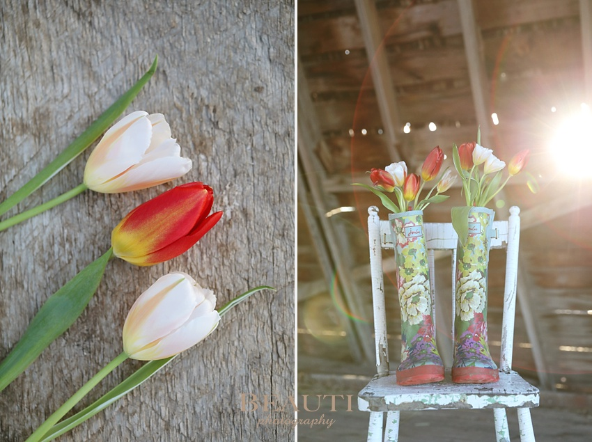 Tribune Saskatchewan outdoor lifestyle photographer first day of spring tulips happy spring flowers change of season Joules wellies flowers in rubber boots photo